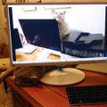 Калли осваивает компьютерную технику со всех ракурсов. 17 февраля 2015 г.